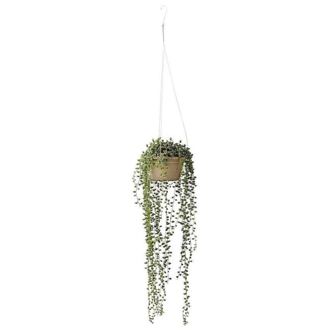 Image of   Flora perler på snor plante 64 cm fra Lene Bjerre