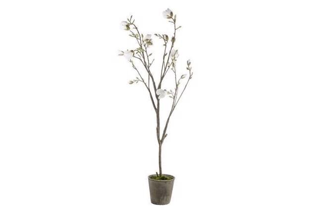 Image of   Flora magnolie højde 170 cm hvid fra Lene Bjerre